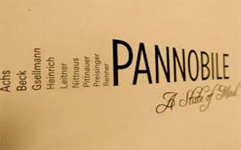 Pannobile_473x295px